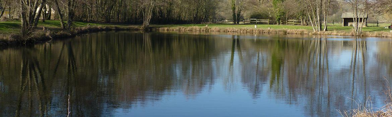 étang pêche truite les trois chênes 2