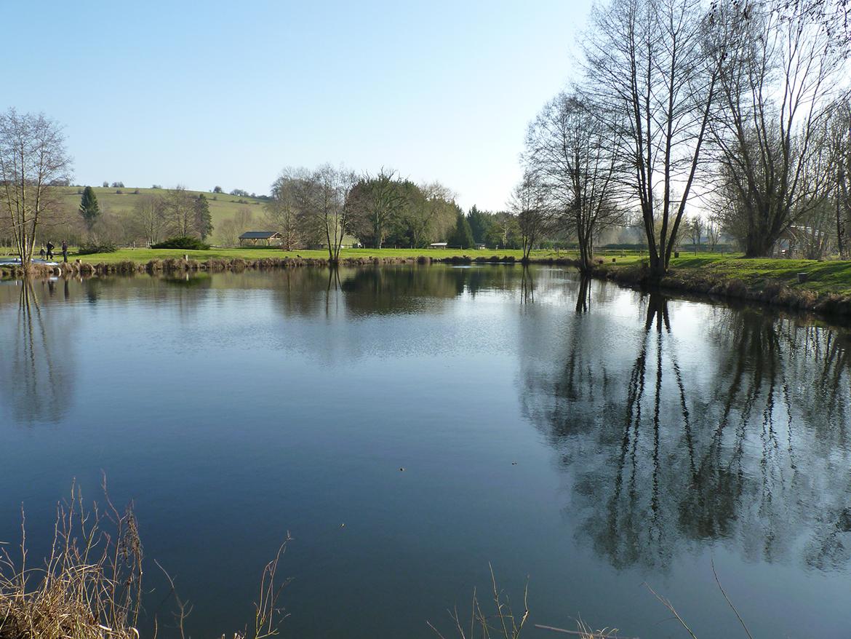 Vue côté – étangs des 3 chênes